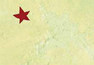 chipul_dictatorului